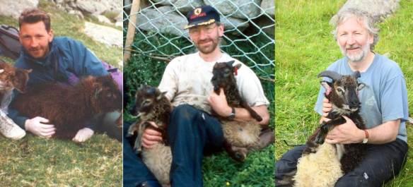 Three decades of Ken and Soay sheep!