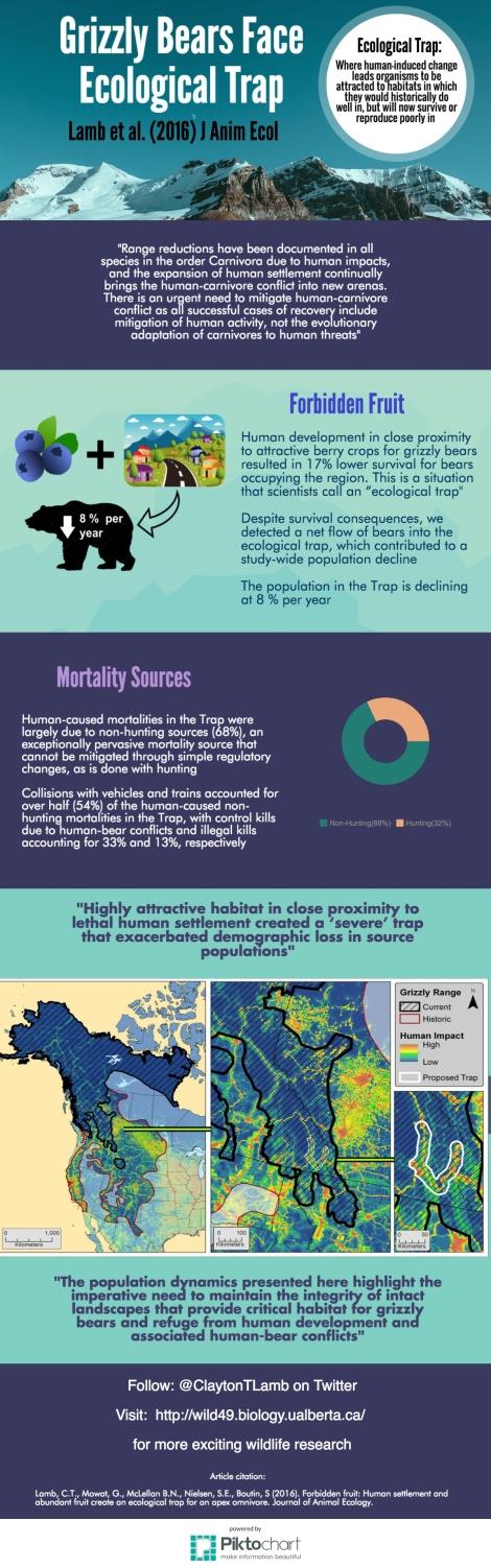 clayton-lamb-infographic