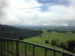 The view from the eastern side of Maungatautari, with predator-proof fence in foreground (photo credit: Leila Walker)