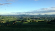 The Waikato farmland surrounding Maungatautari Mountain (photo credit: Leila Walker)