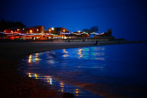 Coastal lighting affects the behaviour of seashore animals ©Kelvin Boot, PML