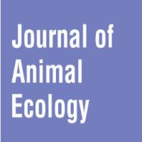 Biodiversity v Intensive Farming; Has Farming Lost its Way?