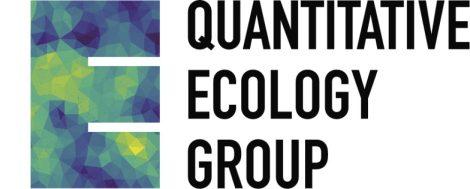 BES QE Logo 2