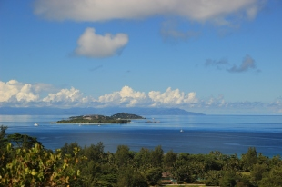 Fig. 1. Cousin Island – in the foreground as seen from the neighbouring island of Praslin – is the home of a population Seychelles warblers that has been subject to detailed studies of behaviour, demography and life history since the 1980's. Even though there are other islands with suitable habitat within flying distance, there is no inter-island dispersal. [Frank Groenewoud]
