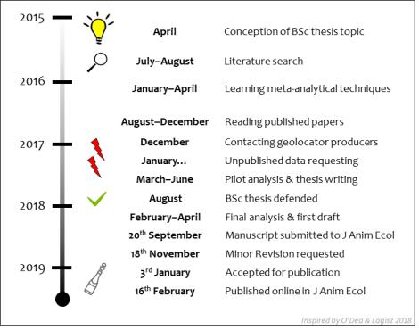 Study timeline